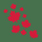Interview de Xavier Chambon, directeur du cabinet Classe Affaires, sépcialisé dans l'accompagnement des franchiseurs et franchisés souhaitant s'implanter au Canada