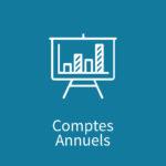 Module Comptes Annuels de Synergee