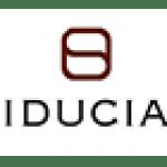 Fiducial, expertise-comptable. Département entièrement dédié à la franchise dirigé par Eric Luc et qui compte, parmi son équipe, Olga Romulus, ruban d'argent de la franchise 2015. Partenaire de Synergee.